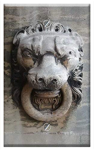 Single-Gang Blank Wall Plate Cover - Stone Carving Lion Lion Head Sandstone Sculpture