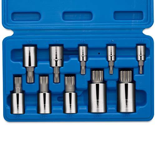 Neiko 10056A XZN Triple Square Spline Bit Socket Set S2 Steel  10-Piece Set  Metric 4mm - 18mm
