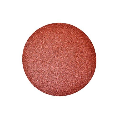 ALEKO 14SD02 10 Pieces 60 Grit Sandpaper Discs 6 Inches
