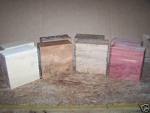 Wood Four 4 Variety Bowl Blanks Beech ELM Hickory Locust Wood Lumber 6 X 6 X 3